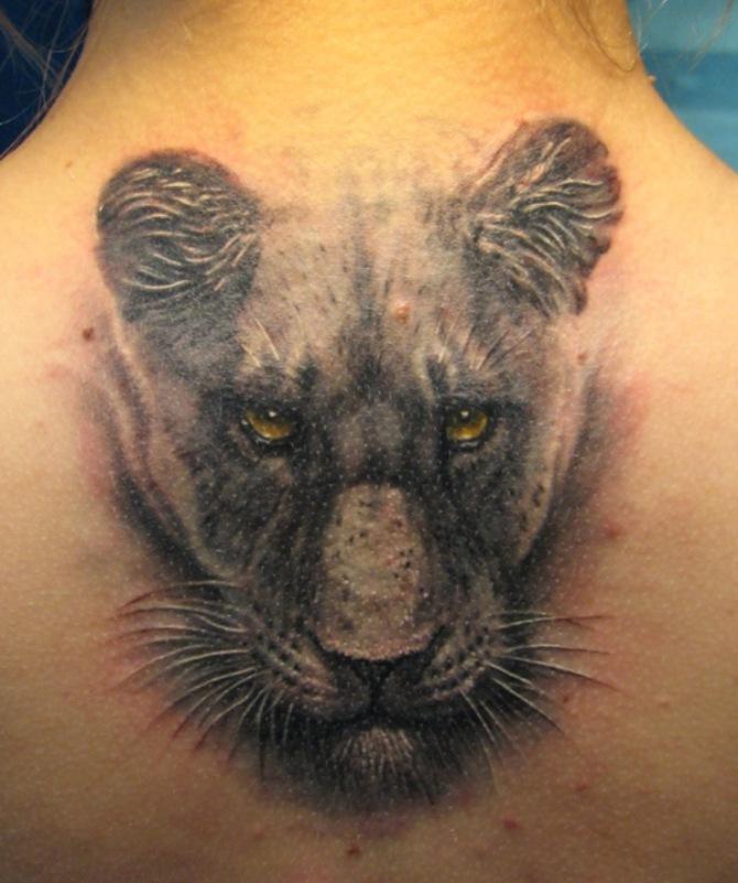 Tattoo Lioness - Lion Tattoos <3 <3
