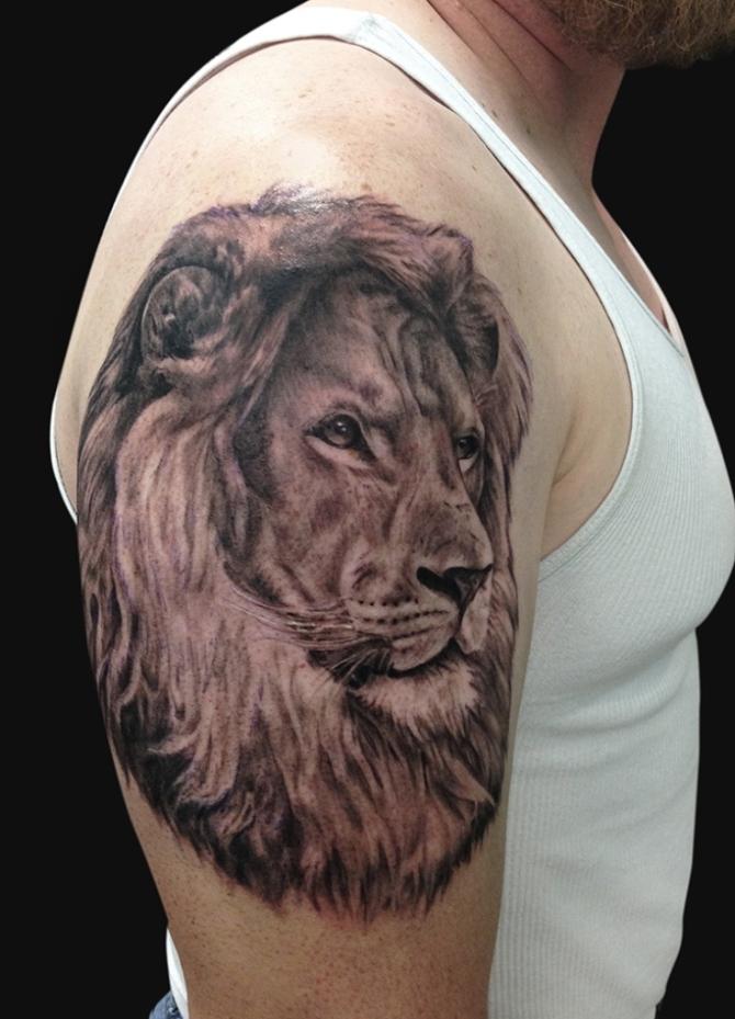 Lion Tattoo - Lion Tattoos <3 <3