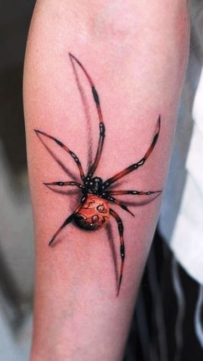 Spider Tattoo 3d - Spider Tattoos <3 <3