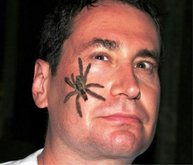 Spider Face Tattoo - Spider Tattoos <3 <3