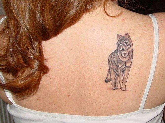 33 Simple Wolf Tattoo